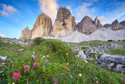 Camping in Südtirol, 3 Zinnen, Blumenwiese