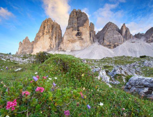 Camping Südtirol: Tipps für deinen Campingurlaub in den Bergen