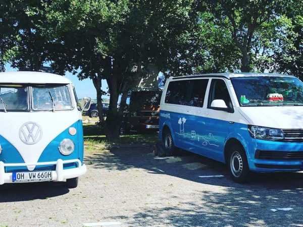 Alter VW Bulli trifft modernen VW T6 California – aber unbedingt in der gleichen Farbkombi! (Foto: Martina + Sascha)