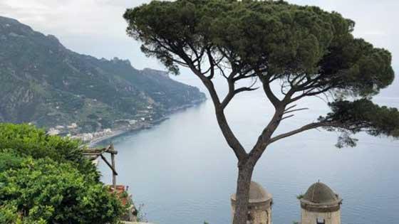 Camping mit Kindern in Süditalien Meer Baum
