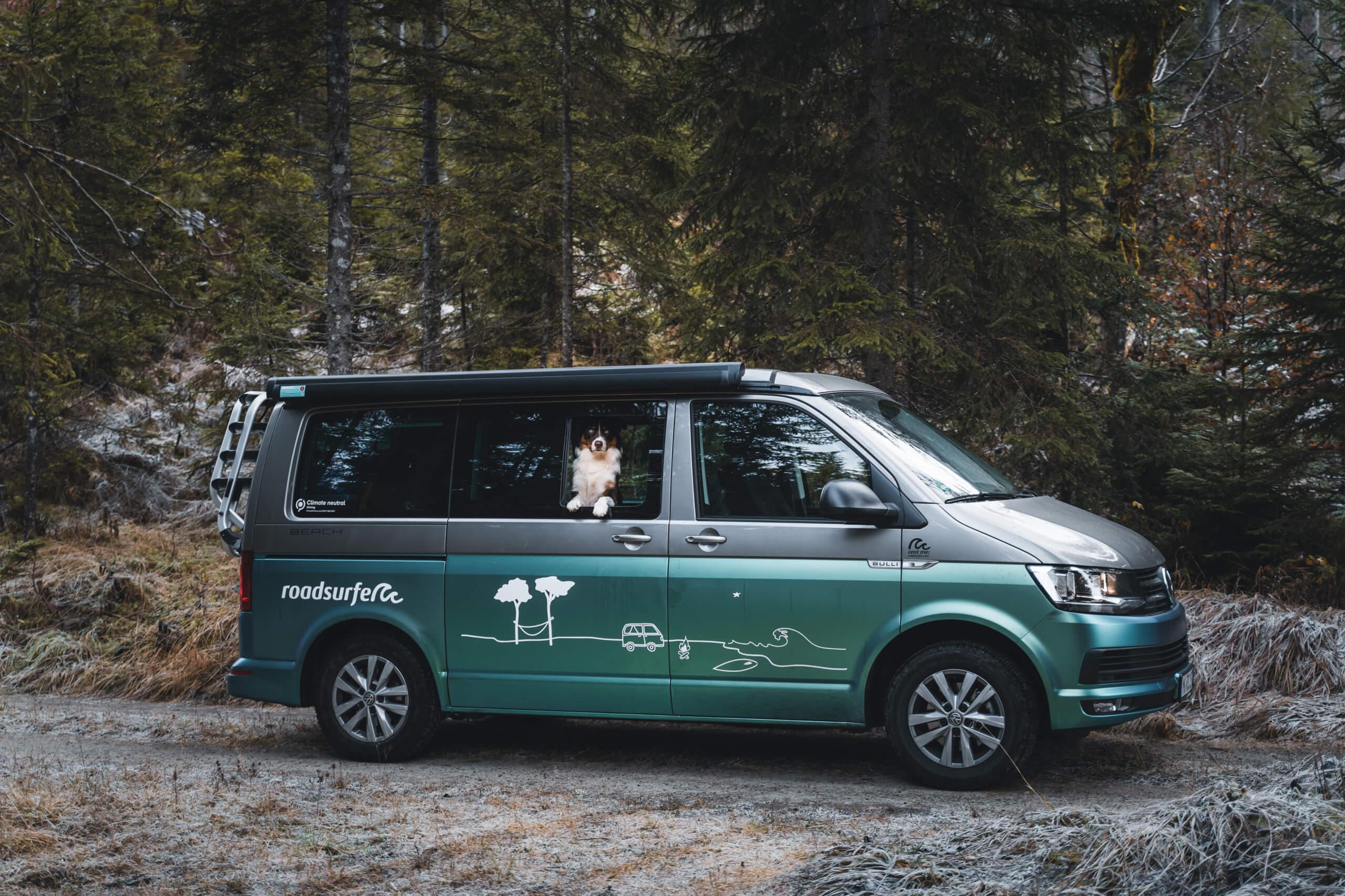 camping 5 estrellas