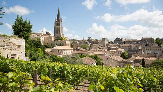 location campervan Bordeaux vignoble