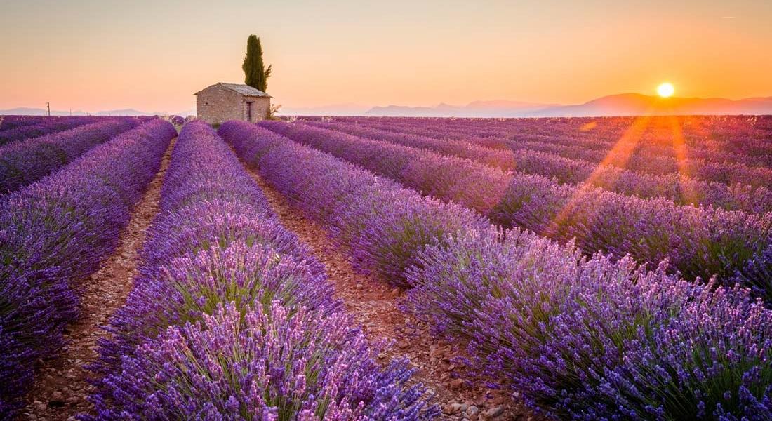 location-campervan-france-provence