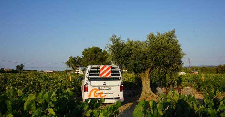 roadsurfer Spot Weingut Barcelona