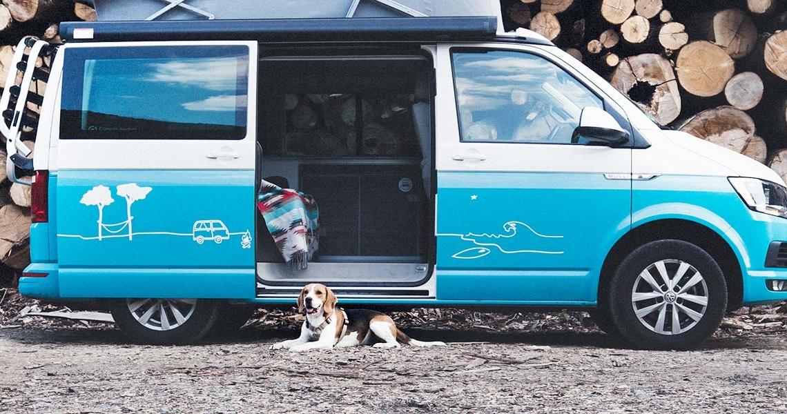 VW California Ocean mieten mit Hund